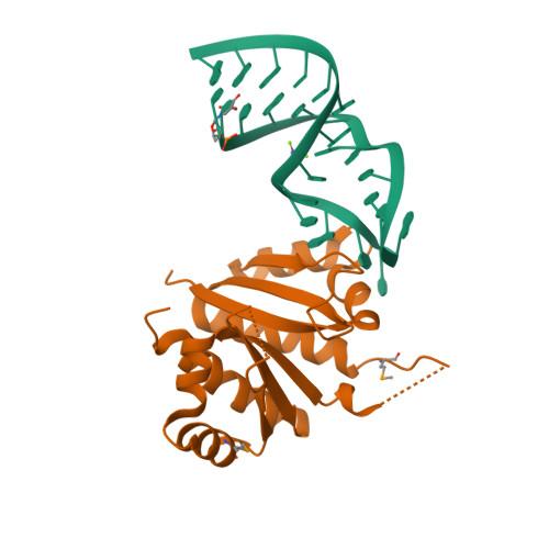 NOVA1 logo