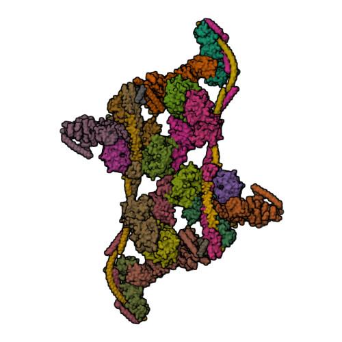 DDX39B logo