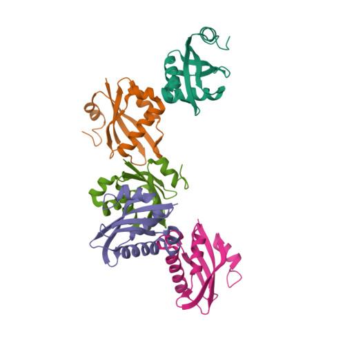 rnp2 logo