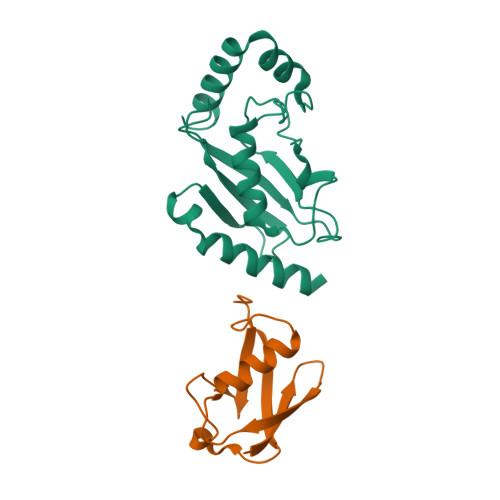 UBE2K logo