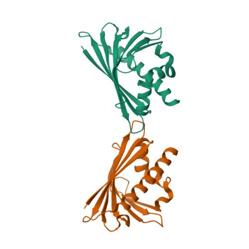 ALL1 logo