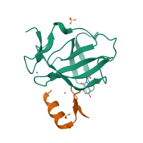 SALL4 logo