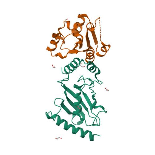 PEX4 logo