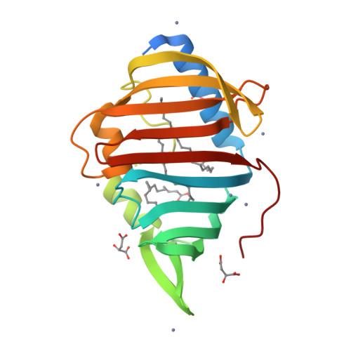 lppX logo