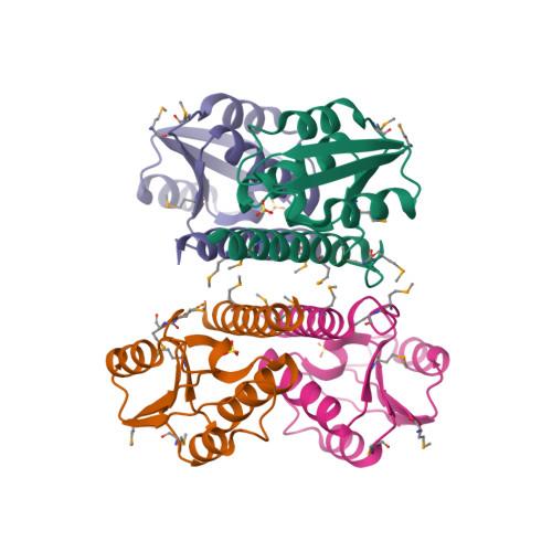 bin3 logo