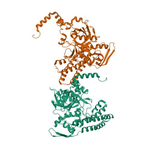 BLMH logo