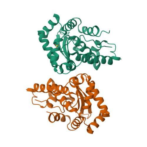 sodB logo