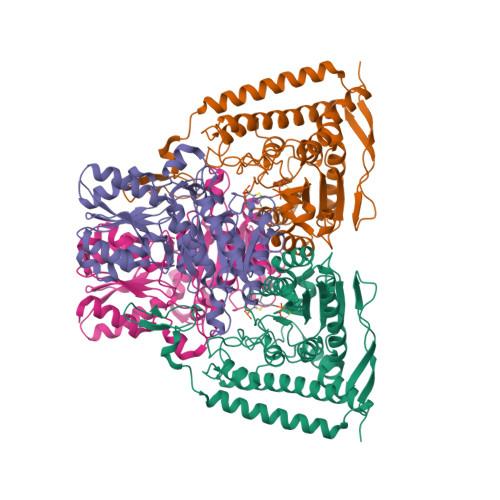 PDHA1 logo