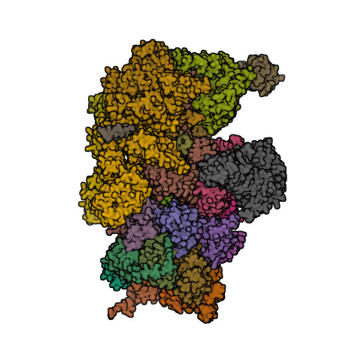 4CR3 image