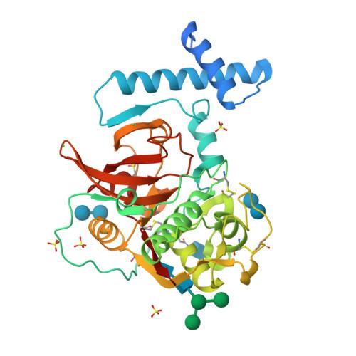 CTSH logo
