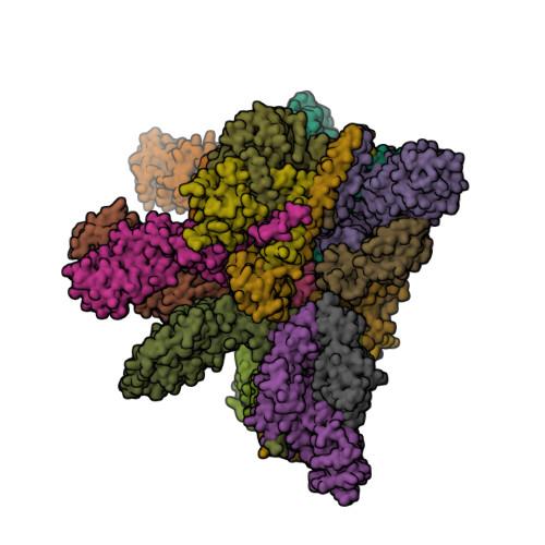 4D10 image