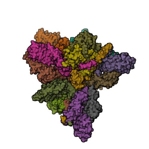 4D18 image