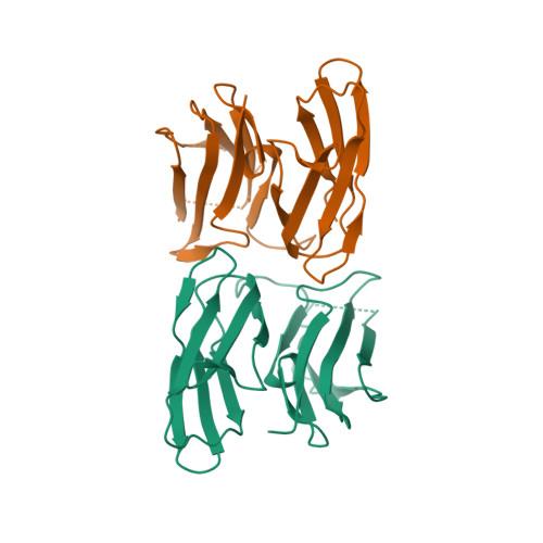 FLNB logo