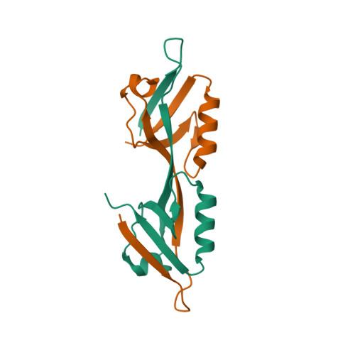 TJP2 logo