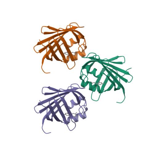 RBP1 logo