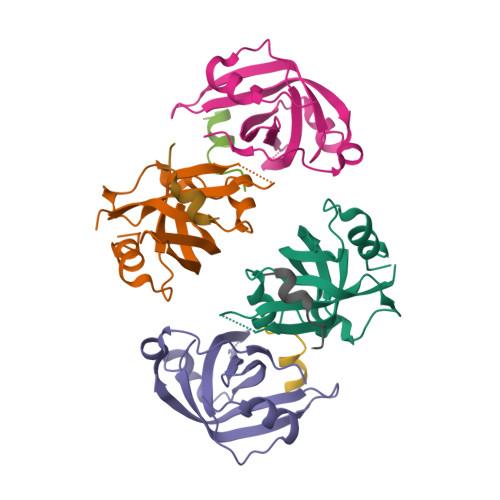 DNA2 logo