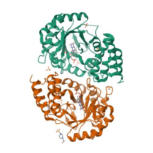 dusB logo