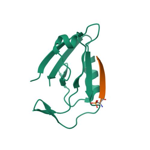 HTR4 logo