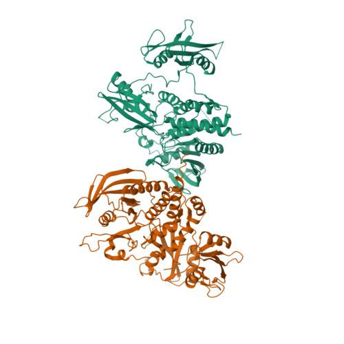 7EMN logo