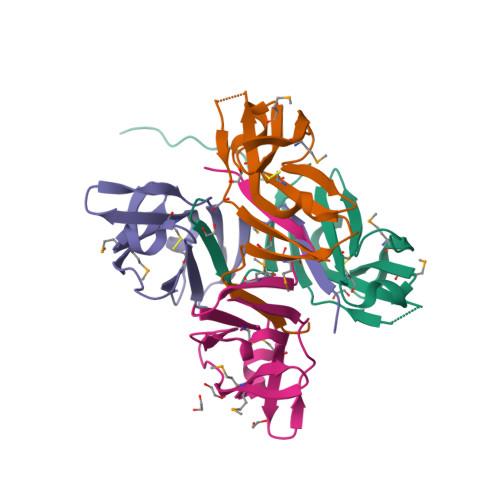 Lair1 logo