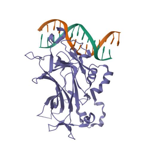 NDT80 logo