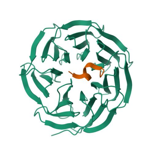 SETD1A logo