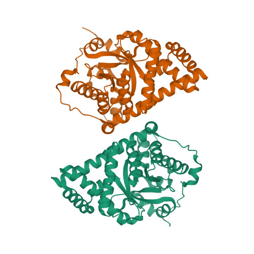 TALDO1 logo