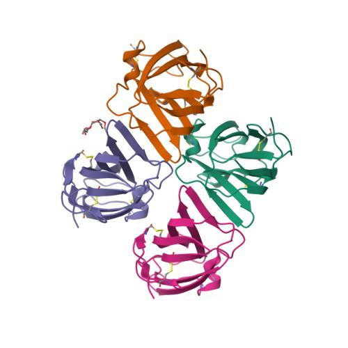 DERF2 logo