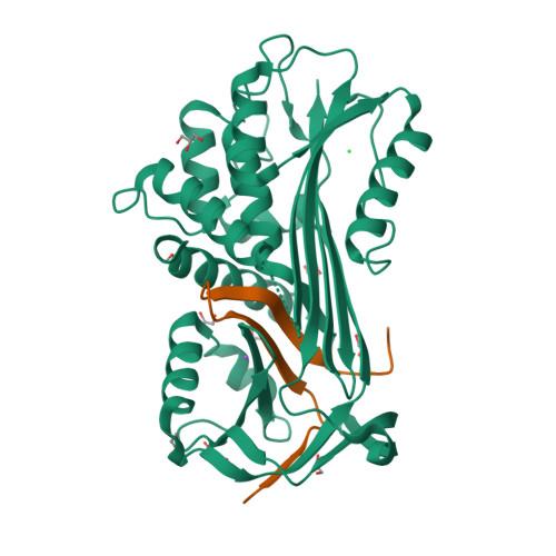 SERPINA4 logo