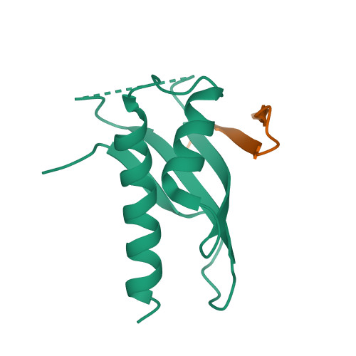 WNK1 logo