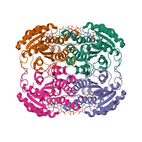 DECR2 logo