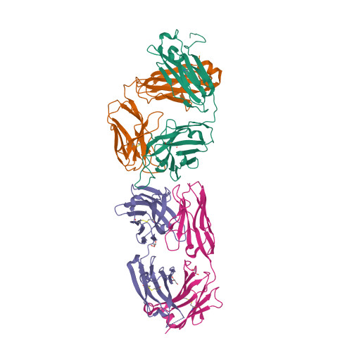 Natalizumab structure rendering