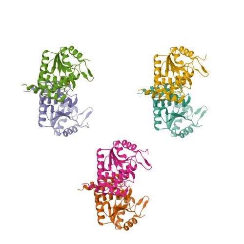 CDKN3 logo