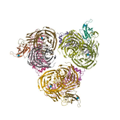 Unc5d logo