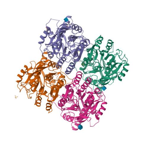 Gria4 logo