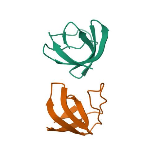 Srgap1 logo