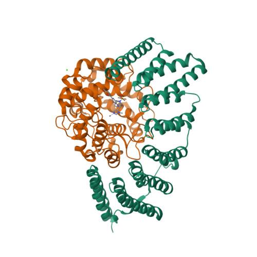 Rabggta logo
