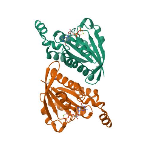 Rnd3 logo