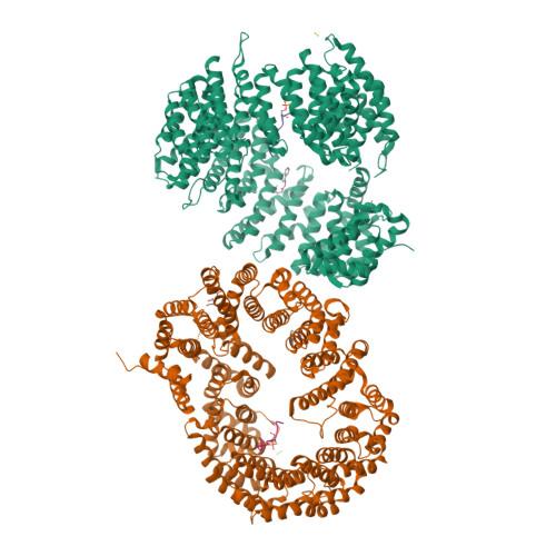 TNPO3 logo