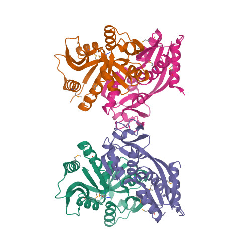cynR logo