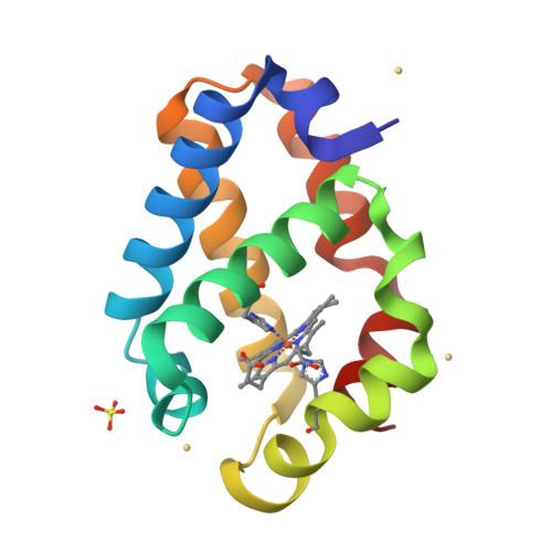 glbN logo