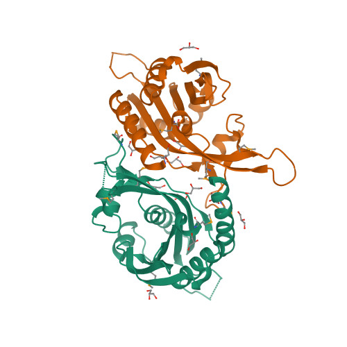 3ICA image