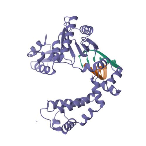 7ICP logo