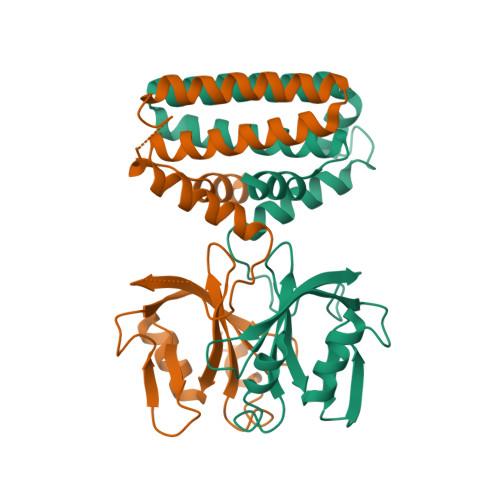 hisI logo