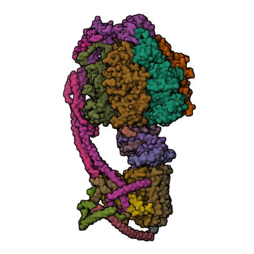 ATP5F1A logo