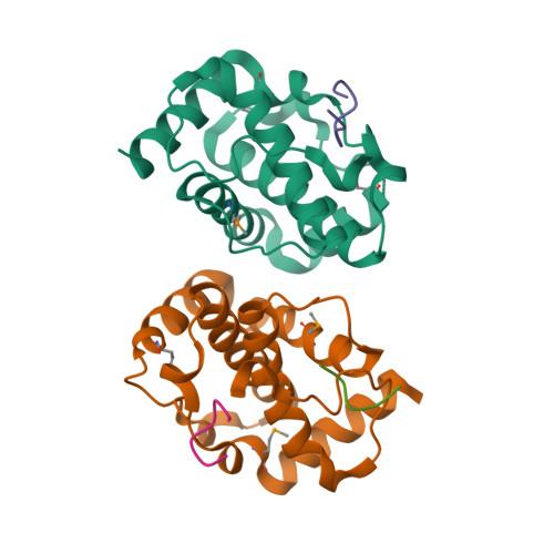 K7R logo