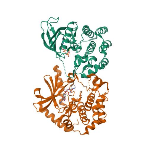 KSR1 logo