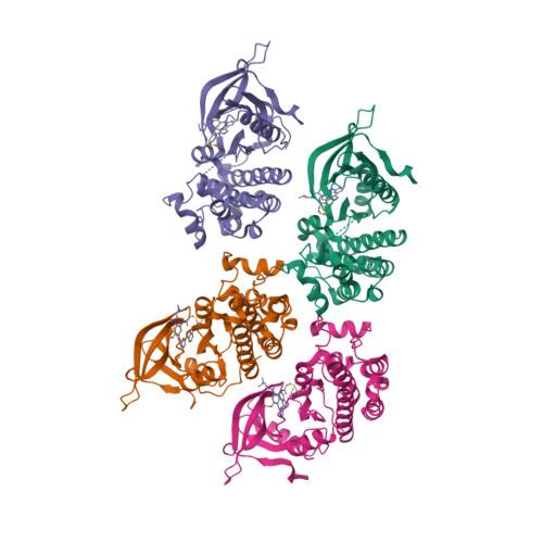 7JXL logo