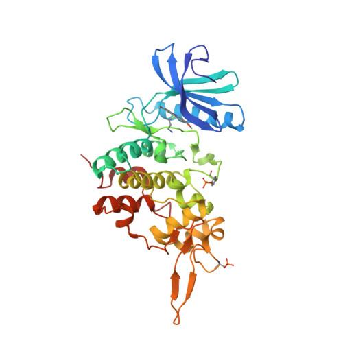 DYRK2 logo