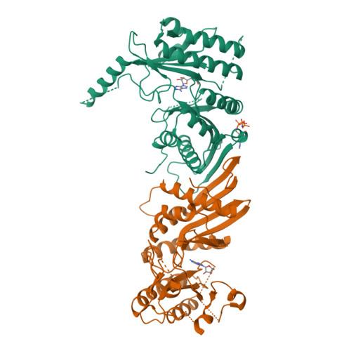 PIP4K2B logo